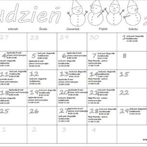 Grafik personelu dodatkowego (technik weterynarii, pomoc weterynaryjna) GRUDZIEŃ 2018